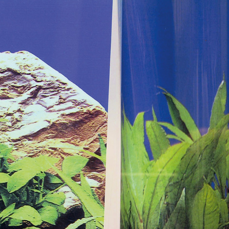 JBL FIXOL 50 ml - Kleber für Fotorückwände in Aquarien und Terrarien