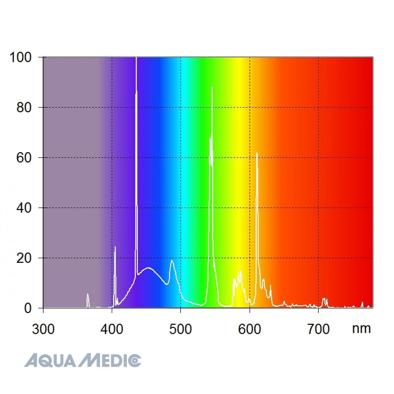 aqualine T5 Reef White 10K 24 W 55 cm - Hellweiße Lampe für Meer- und Süßwasseraquarien