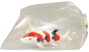 Fischtransportbeutel - 500 x 1250 mm 200 Stück