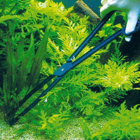 JBL CombiFix 46 cm - Aquarien-Pflanzenzange
