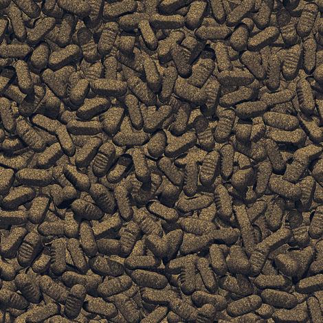 JBL ProPond Silkworms 1,0 kg - Seidenraupen