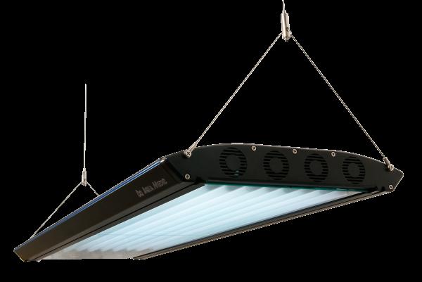 Ocean Light T5 4 x 39 W schwarz - 2. Wahl - Leichte Lackmängel
