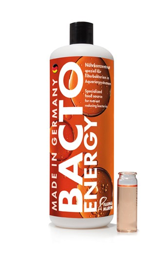 Bacto Energy 250ml Start und Bakteriennährlösung