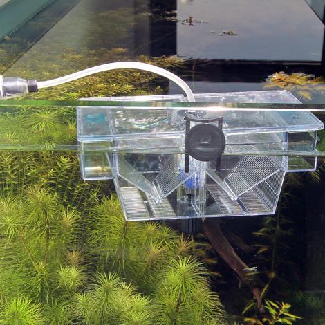 JBL BabyHome Oxygen - Premium-Ablaichkasten-Komplettset mit Luftpumpe