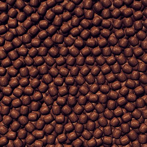 Farbfutter für große Koi - JBL ProPond Color L 5,0 kg