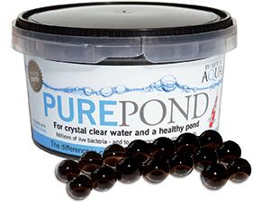 Pure Pond - 500ml
