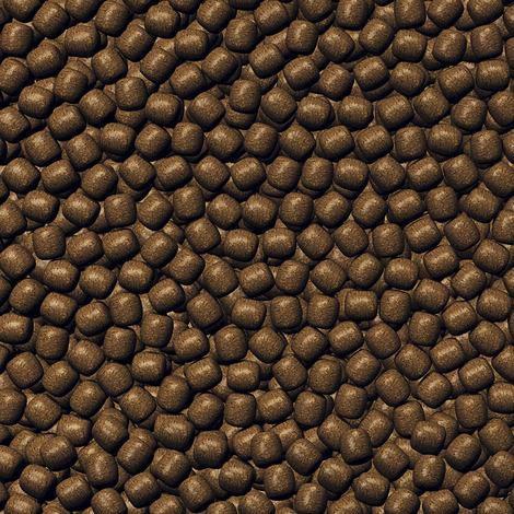 Wachstumsfutter für große Koi - JBL ProPond Growth L 2,5 kg