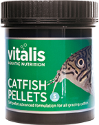 Catfish Pellets Ø 1,5 mm - 300g