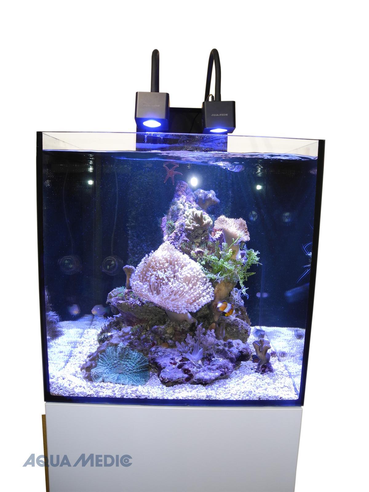 Cubicus CF Qube graphite-black - Meerwasserkomplettaquarium mit Unterschrankfiltersystem
