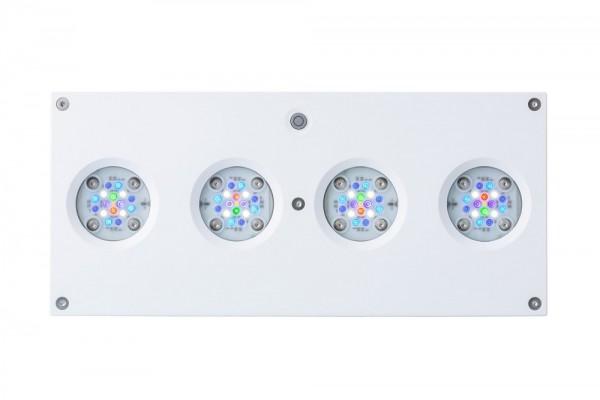 AI Hydra HD 64 LED weiß