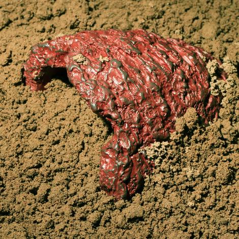 Höhle für Terrarientiere, Rot eingefärbt - Größe M
