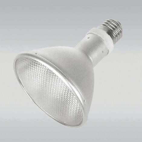 JBL ReptilDesert L-U-W Light alu 50 W - Spot-Sonnenstrahler für Wüstenterrarien