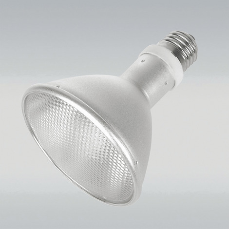 JBL ReptilDesert L-U-W Light alu 35 W - Spot-Sonnenstrahler für Wüstenterrarien