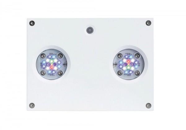 AI Hydra HD 32 LED weiß