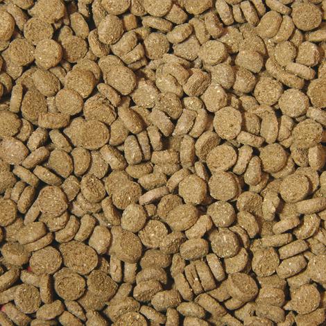 Hauptfutter-Chips für Krebse - 250 ml